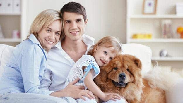 Wills & Trusts dog-young-family Direct Wills Coombe